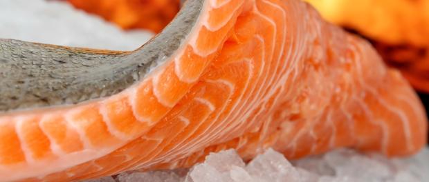 Dobrý zdroj rybího tuku je losos