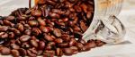 Káva a její vliv na zdraví