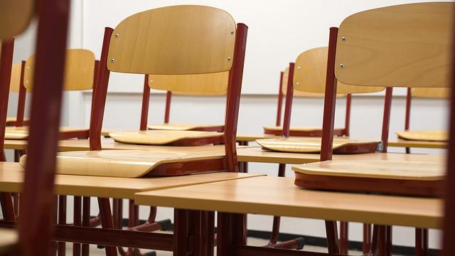 Pamatujte vždy na to, že nakazit celou třídu dokáže pouze jedno zavšivené dítě.